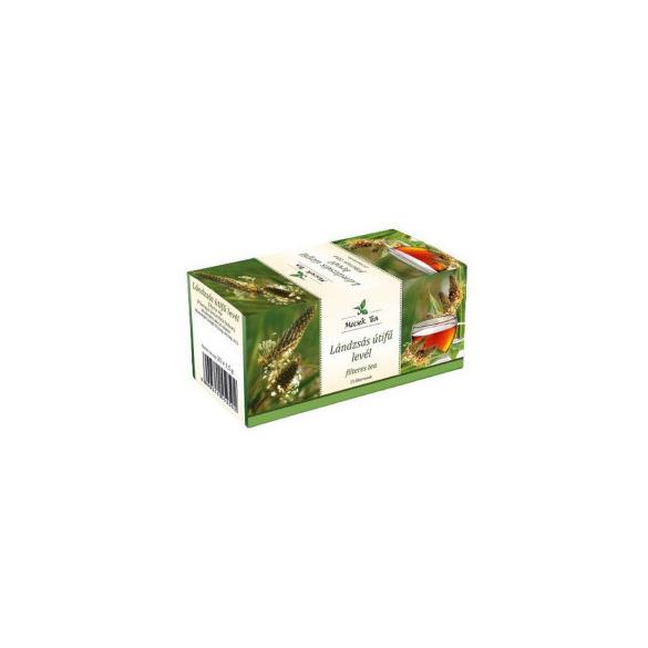 MECSEK Lándzsás útifű levél tea 25 filteres/EP kártyára adható